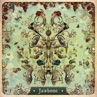 Jawbone_200
