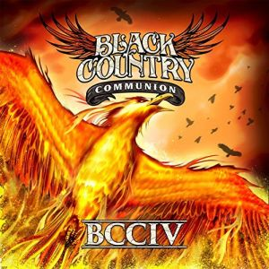BCCIV_300